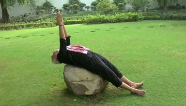 pm narendra modi shares yoga video and give fitness challenge to cm hd-kumaraswamy