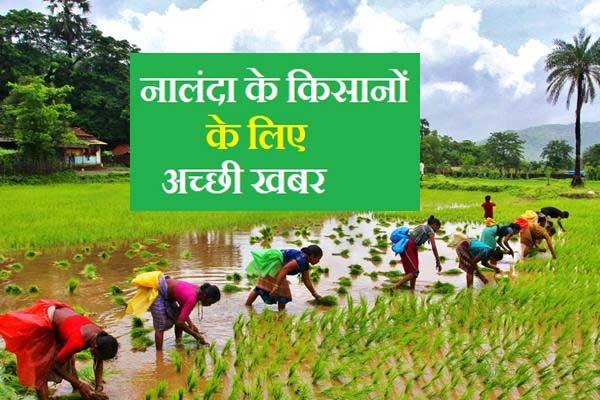 Bihar Agriculture News,apply for diesel grant,डीजल अनुदान,नालंदा में किसान,कैसे करें आवेदन,ऑनलाइन आवेदन कैसे करें,डीजल अनुदान,कितना मिलेगा डीजल अनुदान,एक एकड़ में कितना अनुदान,नालंदा के डीएम,नालंदा के जिला कृषि पदाधिकारी,नालंदा समाचार,बिहार समाचार,किसानों की खबर,हिंद किसान,nalanda news,bihar news,agriculture news,farmer,dao,diesel anudan,kitna milta hai diesel anudan,apply for diesel anudan